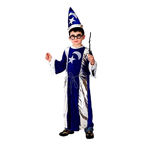 Costume Mago Merlino Carnevale Blu e argento Bambino Taglia L 7 8 anni Idea Regalo Natale Compleanno Festa