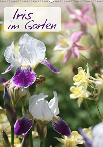 Iris im Garten (Wandkalender 2021 DIN A2...