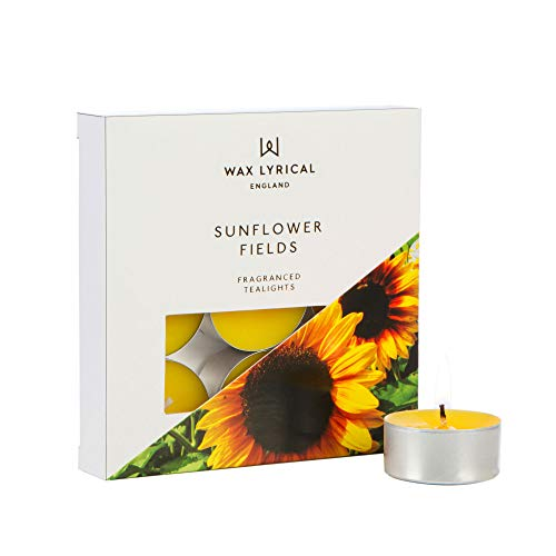 WAX LYRICAL Velas aromáticas, Caja de 9 Unidades, Girasol, Amarillo, Box of 9