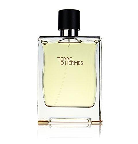 Hermès Terre D'Hermès Eau De Toilette 100 ml (man)