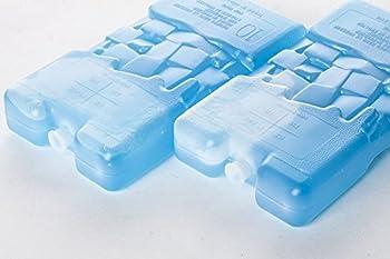 CurverLot de 2 Blocs réfrigérants