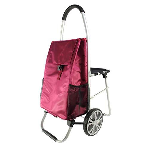 RSWLY Con asiento plegable plegable para coche, mango antideslizante y portátil, con gravedad mejorada (color: rojo, tamaño: 60 x 100 cm)