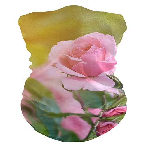 Pasamontañas AJINGA para la cara, máscara antipolvo, máscara facial para mujer con bolsillo interior, 2 piezas de filtro, polainas para el cuello de acercamiento rosa, color Multicolor 7, tamaño talla única