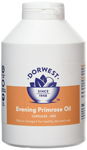 Dorwest Herbs Cápsulas de aceite de onagra para perros y gatos 500 cápsulas