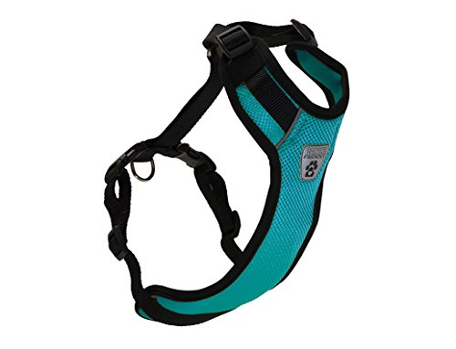 Canine Friendly Vented Vest Harness, X-Large, Teal