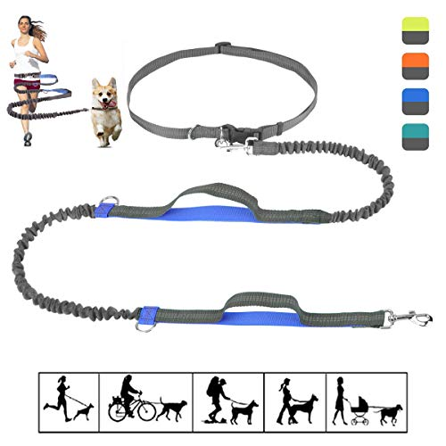 Bungee Dog Leash, Hands Free Dog Leash for Running Walking Training Hiking - Dual Handle Lead Leash Shock Absorbing, 3M Reflective Adjustable Waist Belt for Medium & Large Dogs (Hold Up to 40lbs)