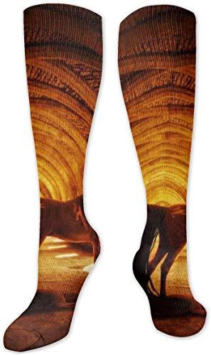 Horsetail Stone Light Fantasy High Performance Sports Casual Long Socks for Women and Men - Fit for Travel, Running, Hiking, Football, Nurses