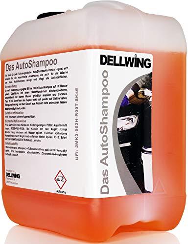 DELLWING Il concentrato di shampoo per auto 10 litri - Shampoo professionale per la tua auto - Può essere diluito fino a 1: 100 - Ma può essere utilizzato anche per la pulizia in macchina