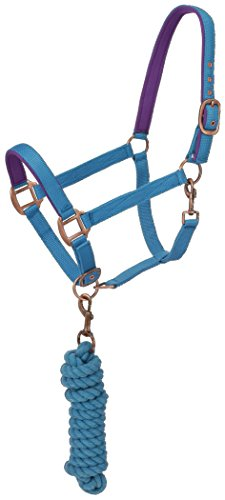 Tough 1 Neoprene Padded Halter with Antique Hardware Lead Set, Aqua Blue