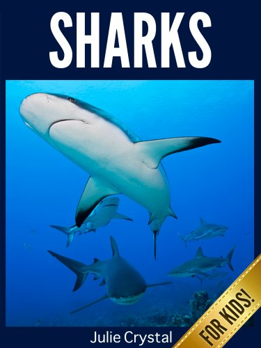 Sharks for Kids: Beautiful Pictures and Fun Shark Facts (Amazing Animals Series Book 4) (English Edition)