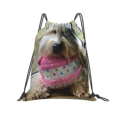 Morkies - Bolsas para hombre y mujer, diseño de perros pequeños que no derraman, tamaño grande