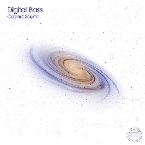 Digital Bass