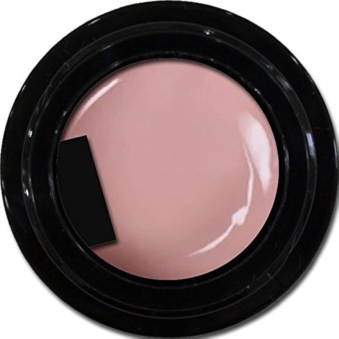 同化する症候群排泄物カラージェル enchant color gel M506 SmokePink 3g/ マットカラージェル M506スモークピンク 3グラム