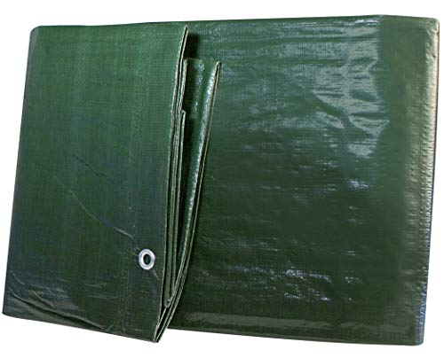 Windhager Light Bâche de Protection 4 x 6 m Vert