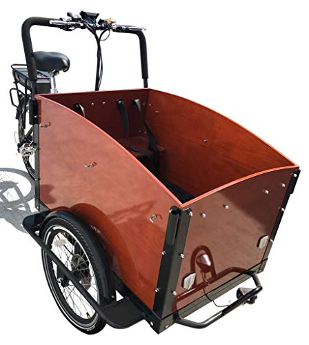E-Lastenfahrrad Transportrad E-Donkey kaufen  Bild 1*
