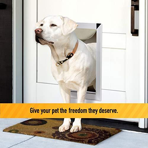 large breed dog door