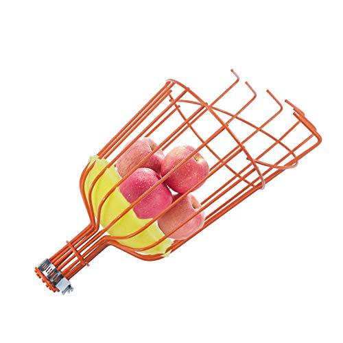 INFILM Obstpflücker aus Metall, mit Schaumstoffkissen, Harvesterkorb, um Prellungen zu verhindern, für Obst, Orangenapfel Birne (Stange Nicht im Lieferumfang enthalten)