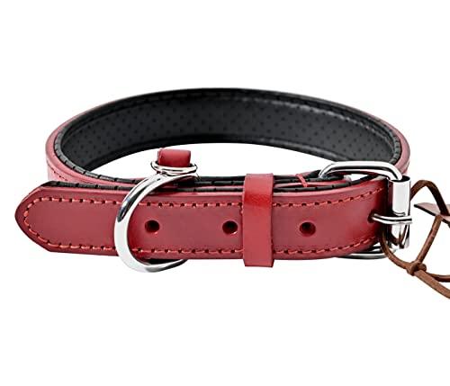 Halsband Hund Leder Rot mit Perforiert Gepolstert D-Ring, Hochwertig Echtes Büffelleder Hundehalsband für Mittelgroße Hunde, Klassische Lederhalsband Dog Collar L