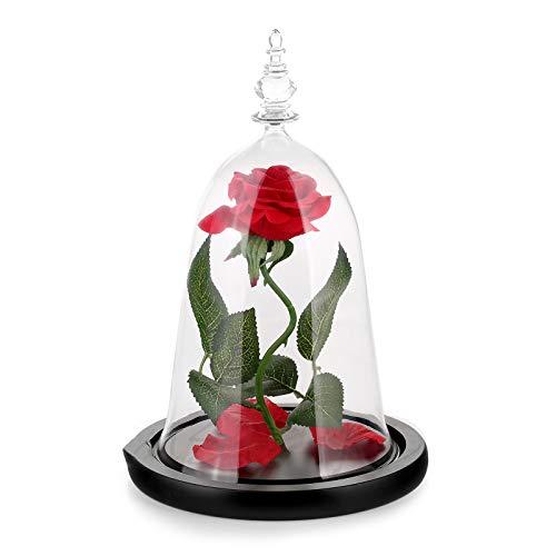 XHDH Rosa eterna Natural, con Luces LED, Regalo de Flores eternas para Mujeres, día de la Madre, Boda, Regalo de cumpleaños