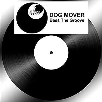 Bass the Groove