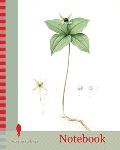 Notebook: Paris quadrifolia, Parisette à quartre feuilles, Herb Paris, True-Love, or One-Berry, Redouté, Pierre Joseph, 1759-1840, les liliacees, 1802 - 1816