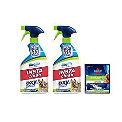 Image of Woolite INSTAclean Permanent Pet Stain Remover, 22oz (Pack of 2), 21809: Bestviewsreviews