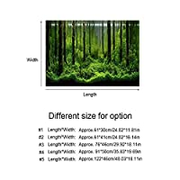 Background Poster, Waterproof Underwater Forest Fish Tank Background for Free Removal and Replacement(61*41cm, Black)