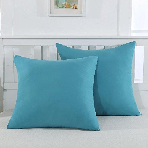 MOHAP Lot de 2- Taies d'oreiller 65x65cm Lac Bleu Housse d'oreiller avec Une Fermeture Eclair en Microfibre