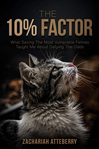 The 10% Factor: What Saving The Most Vulnerable Felines Taught Me About Defying The Odds