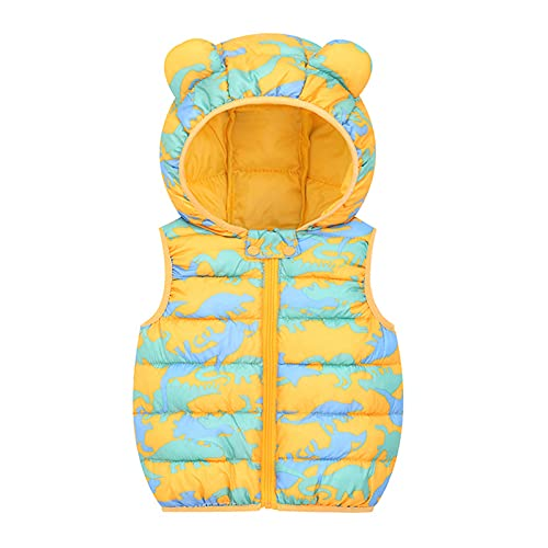 Chaqueta con capucha para niños y niñas, con estampado de dibujos animados, para otoño, monocolor, chaqueta cortavientos, para exterior, abrigo cálido de invierno, dorado, 55