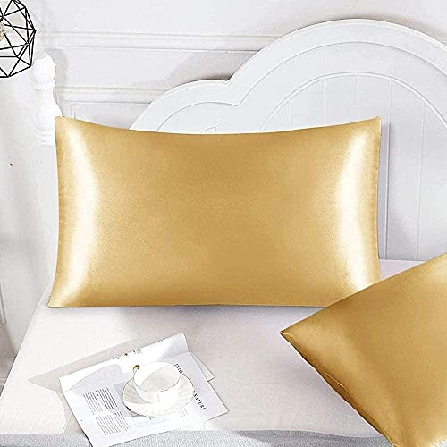 Silk Pillowcase,Pure Natural Slip Silk Both Sides with Hidden Zipper,100%Pure Mulberry Silk Pillowcase 2 Pack or 4 Pack for Hair and Skin -Light_Yellow_20inX40in_2_Pack
