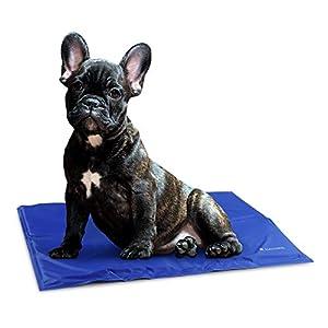 immagine di Navaris Tappeto rinfrescante per Cani Gatti - Tappetino refrigerante per Animali per la Regolazione della Temperatura corporea - 40X50cm Blu Scuro