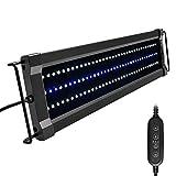 NICREW ClassicLED G2 Lampada Acquario, Plafoniera LED per Acquario, Luce Acquario Impermeabile con 2 Canali di Controllo, Luci Bianche e Blu, 45-60 cm, 15W 1160LM