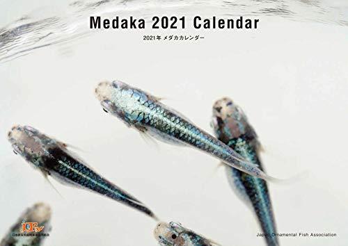 Medaka 2021 Calendar(2021年メダカカレンダー) ([カレンダー])