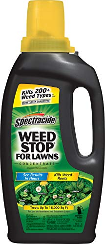 Spectracide 96392 Weed Stop for Lawns Concentrate (HG-96392) (32 fl oz), Pack of 1, V