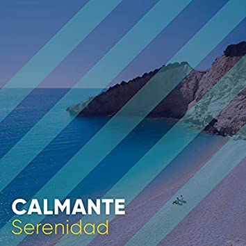 # 1 Album: Calmante Serenidad