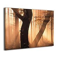 Skydoor J パネル ポスターフレーム 風景 木漏れ日の森 インテリア アートフレーム 額 モダン 壁掛けポスタ アート 壁アート 壁掛け絵画 装飾画 かべ飾り 50×40