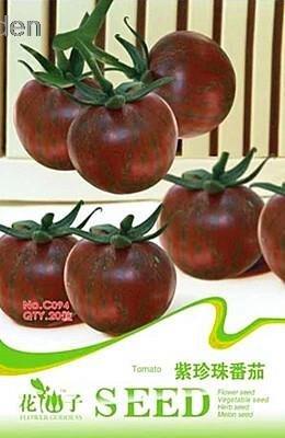 20pcs Livraison gratuite Violet Perle Tomates Graines Semences Potagères Heirloom Emballage d'origine en usine Le taux de bourgeonnement 90% de