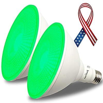 AmeriLuck Colored Outdoor PAR38 LED Flood Light Bulb, 13W (Green, 2 Pack)