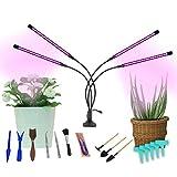 Lampe Horticole Led pour Plantes à 4 Têtes, Lampe pour Plante 40W, 80 LED Lampe de Croissance à 360°Éclairage Horticole avec 15 Outils de Jardinage, 9 Niveaux Dimmables, 3 Modes de Minuterie (3/9/12H)