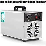 Wensa Generador de ozono Natural Olor Remover Purificador de Aire Comfort Acero Inoxidable Limpiador Comercial Ozonizador Profesional Desodorante y esterilizador -50g