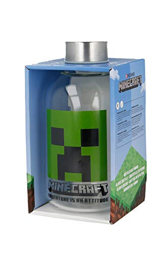 Stor Botella DE Cristal 620 ML | Minecraft