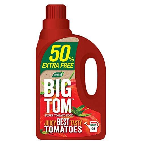 Westland Gros Tom Super Tomate Nourriture 50% Extra Gratuit 1.9lt