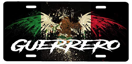 Guerrero Mexico Aluminum License Plate Sign Placa 6' x 12'