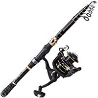 PLUSINNO Fishing Rod and Reel Combos Carbon Fiber Telescopic Fishing Rod with Reel Combo Sea Saltwater Freshwater Kit (2 Sections & Extended Handle Fishing Rod+Reel(No Lures&Line), 2.59M 8.6Ft)