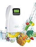 brumicold GENERADOR DE OZONO 220v y 12DC desinfecta y desodoriza, Salon, Cocina, hogar, Coche, Comercio, purifica el Aire
