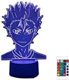 3D Illusion Lamp 16 Colour Changing Acrylic LED Night Light with,Sculpture Lights Room Home Decoration,USB Charger, Pretty Cool Toys Gifts Ideas Birthday Holiday Xmas for Baby Haikyuu Nishinoya Yuu