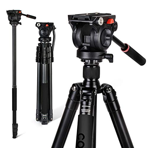 71' Tripod, COMAN Premium Camera Tripod, Portable All-in-One Professional Video Tripod, Lightweight Aluminum, Q5 Fluid Head with 1/4' and 3/8' Mounting Screw for DSLR Cameras Video Camcorders
