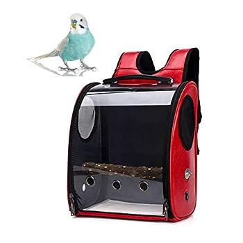 LinkLvoe Transport des Oiseaux Pet Bird Perroquet Outdoor Travel Cage Transparent Respirant avec Un BâTon en Bois La Conception des Trous D'AéRation Convient à Toutes Sortes d'oiseaux