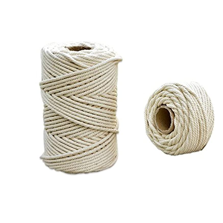 UUsave Natural Virgin Cotton Cord(About 109 yd) Twine String Handmade Decorations Macrame Wall Hangings Plant Hanger Crocheting Bohemia Dream Catcher DIY Craft Knitting (4mm)